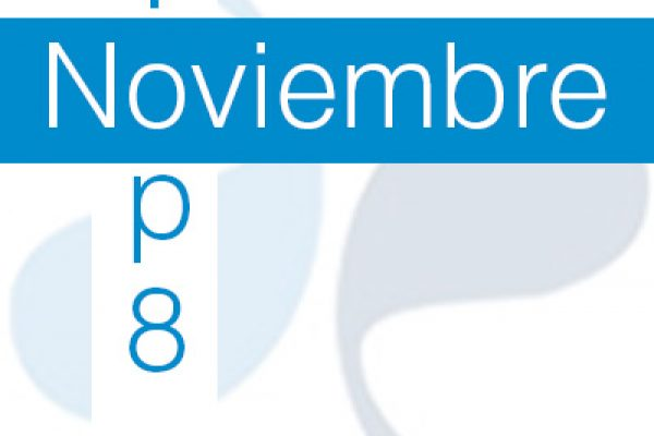 TOP 8 Noviembre